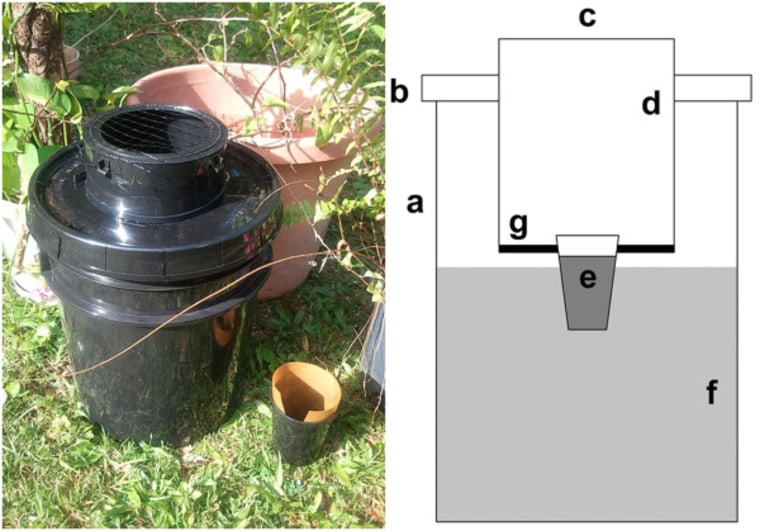This bucket trap was made by health officials in Puerto Rico. They hope it might help communities fight Zika virus. Components include a black pail(a), a black pail lid(b), a 12.8cm entrance diameter(c), a black capture surface (CS) coated with adhesive(d), PAM(e), a 9.3 l capacity infusion reservoir(f), and a screen barrier between the CS and the infusion reservoir(g)