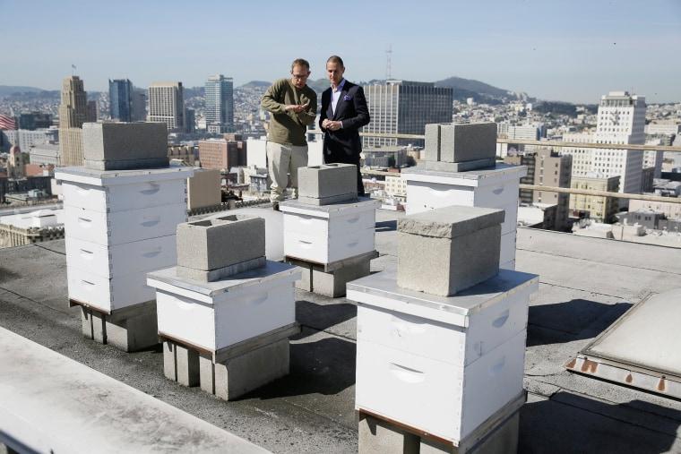 Image: hotel bee San Francisco
