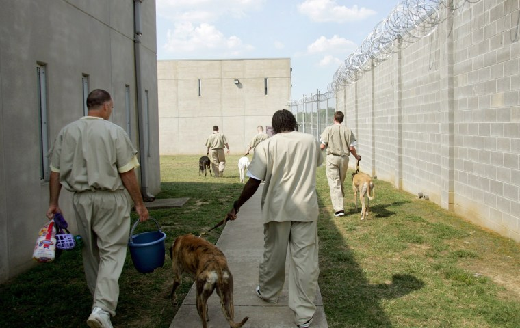 Inmates enter the yard as they prepare to work with the dogs at Corrections Corporations of America men's prison June 23, 2005, in Nashville, Tenn.