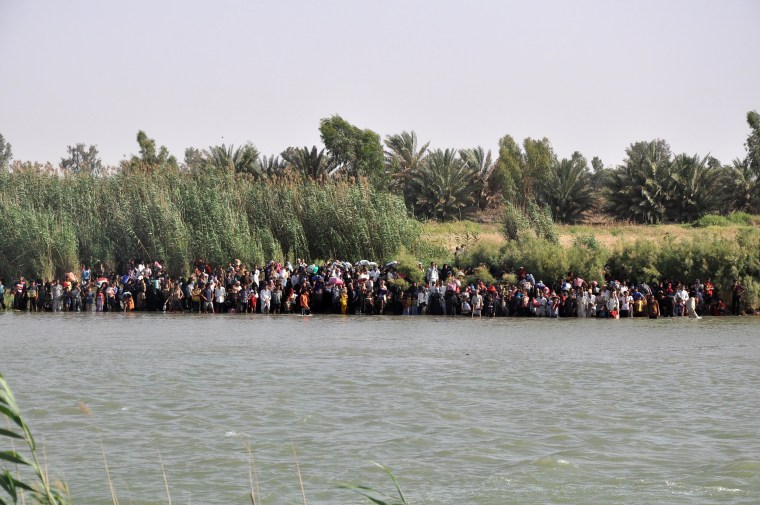 Image: Internally displaced civilians from Fallujah flee their homes