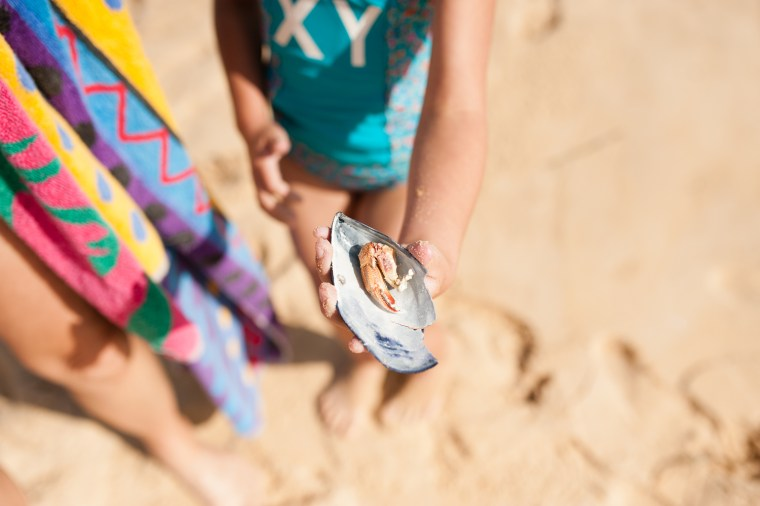 Wilkerson suggests using a macro lens to capture the frogs, snails, pebbles, seashells and other treasures kids are bound to discover over summer vacation.