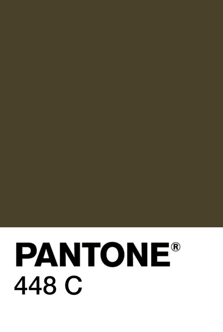 Pantone chip - 448C