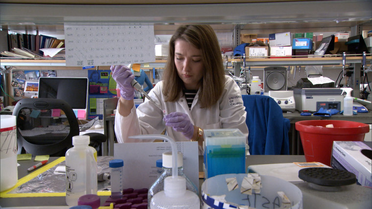 A researcher at the Center for BRCA Research at the University of California, San Francisco.