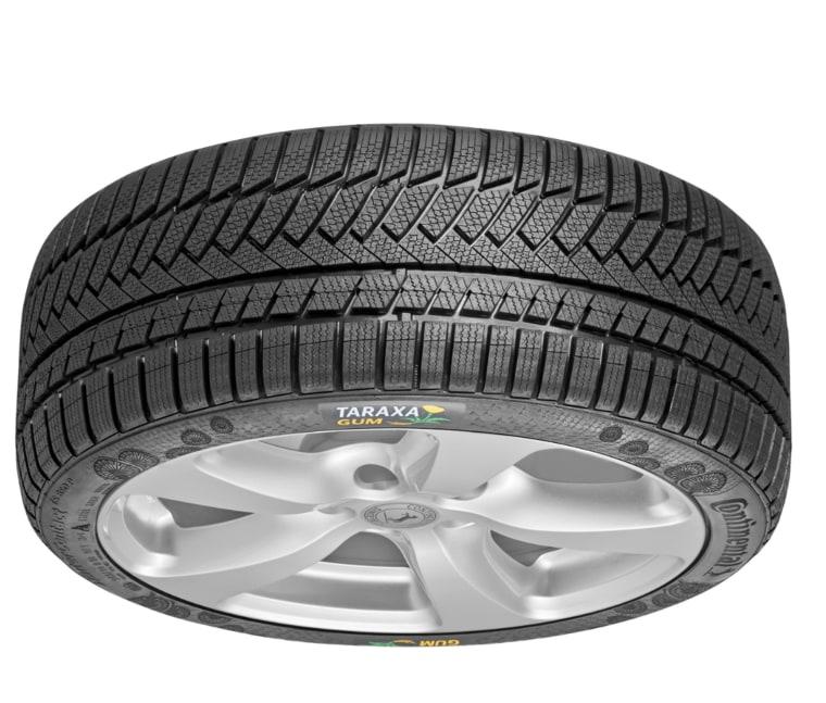 Image: dandelion fiber tire