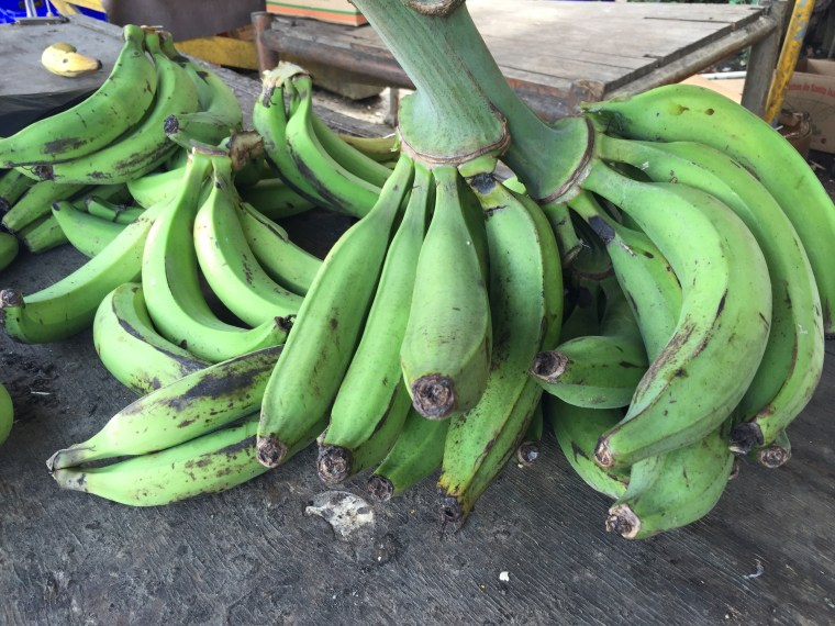 """A picture of green bananas, known as """"guineos verdes,"""" at a stall near Rio Grande, Puerto Rico."""