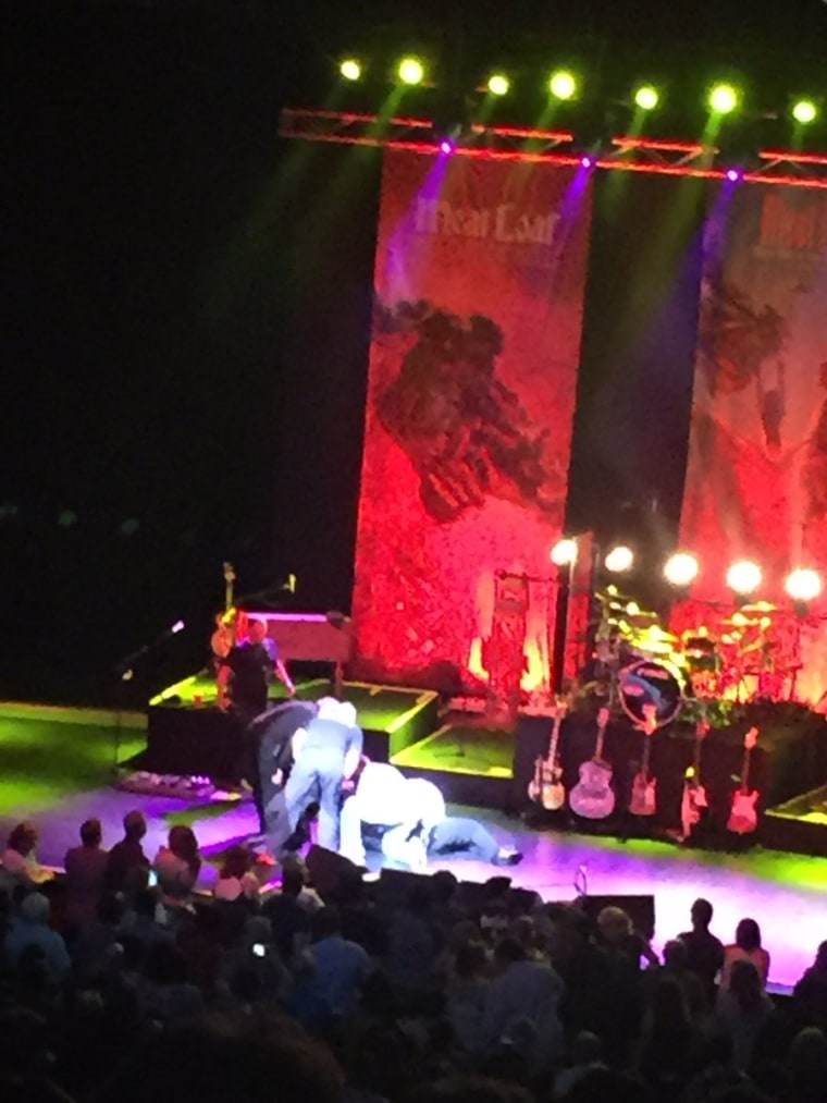 This photo taken by a fan in Edmonton shows the scene after the singer known as Meat Loaf collapsed on stage during a performance Thursday, June 16, 2016.