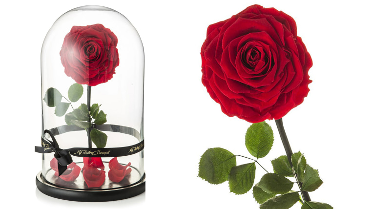 Beauty And The Beast Rose In Dome For Sale