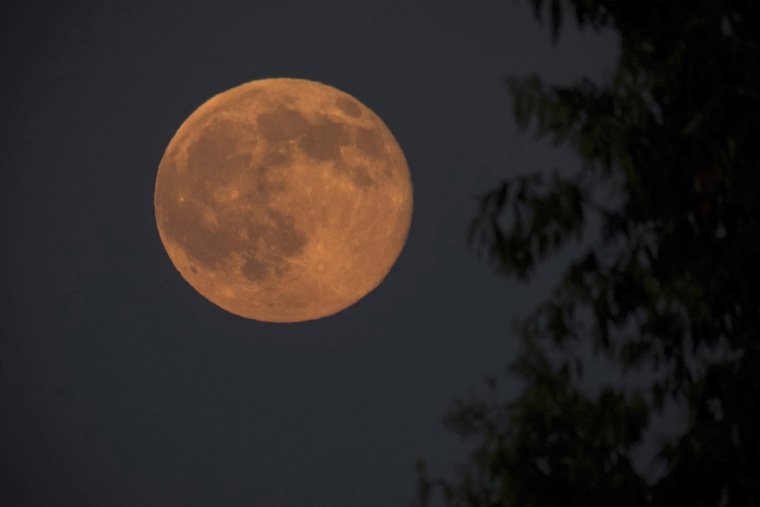 Image: A full moon during the shortest night of the year near Nagykanizsa, Hungary