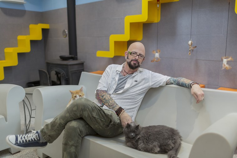 Jackson Galaxy with cats