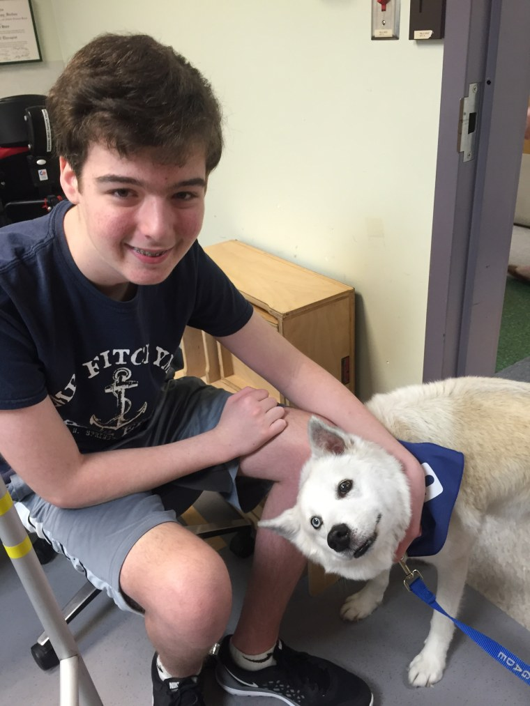'An inspiration': Dogs with special needs help kids heal in physical therapy