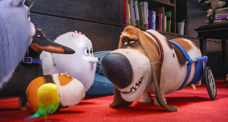 Image: 'Secret Life of Pets'