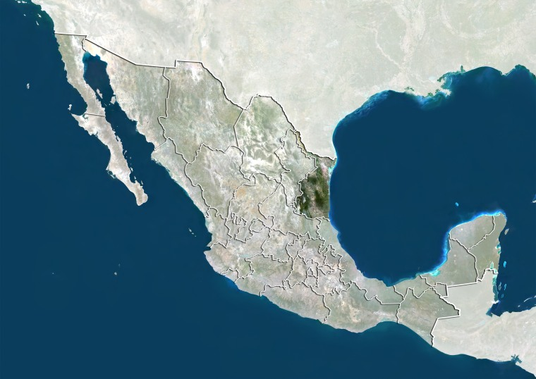 Mexico and the State of Tamaulipas, True Colour Satellite Image