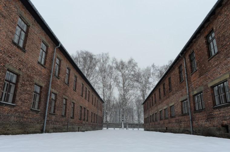 Auschwitz survivors return for the 70th Anniversary