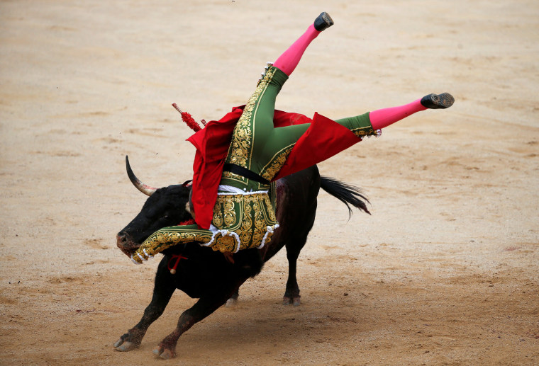 Image: Spanish bullfighter Perera gets tackled by a bull during a bullfight at the San Fermin Festival in Pamplona