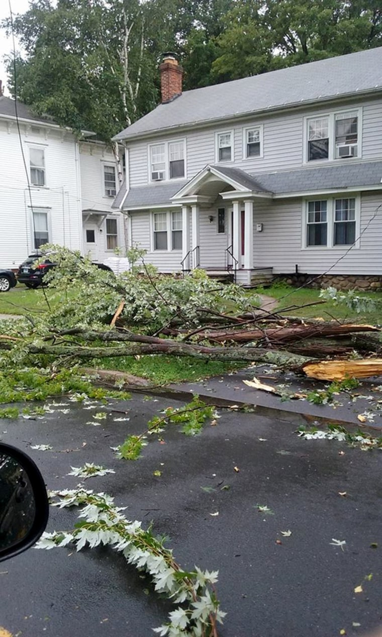 Photos of storm damage in Bristol, CT on July 18.