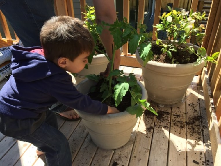 Toddler helps with gardening