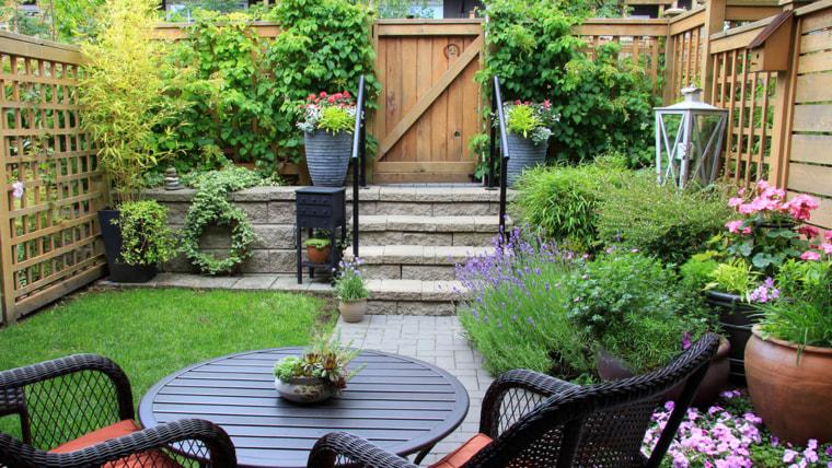 Backyard, table, flowers, garden