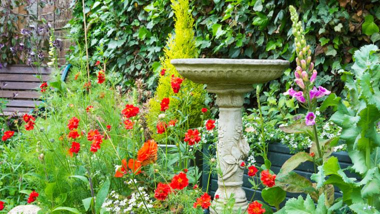 Backyard, table, flowers, garden, fountain, bird bath