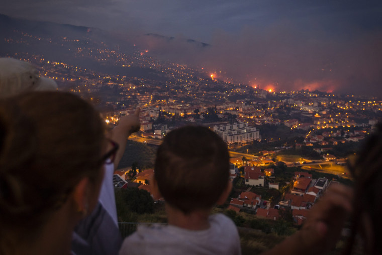 Image: Forest fire in Madeira Island