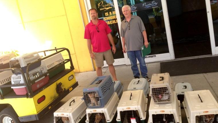Pilots N Paws volunteers are saving animals amid Louisiana flooding