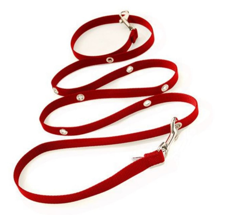 Never worry about knotting, tangling or accidentally unclipping your dog's collar again with the SnapLeash