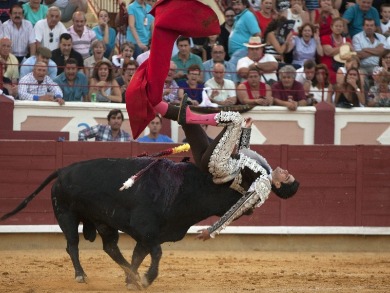 Image: San Julian Fair bullfighting
