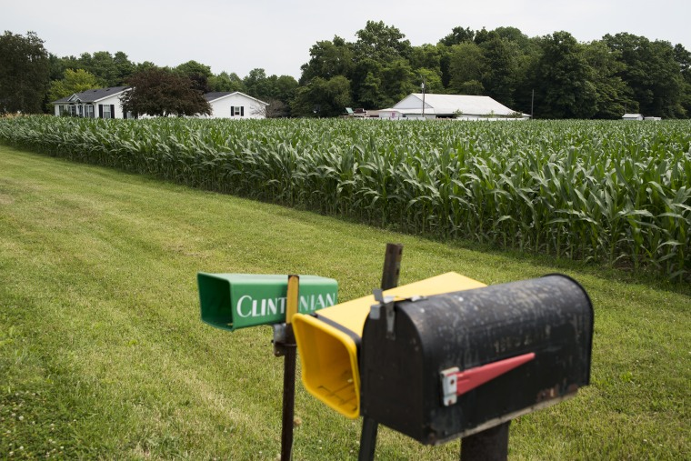 Mailboxes and a cornfield create a typical scene in Newport, Indiana.