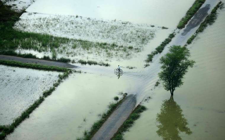 Image: An Indian cyclist rides along a flooded road on the outskirts of Allahabad