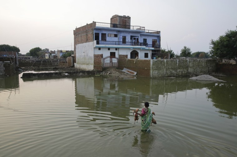 Image: An Indian woman returns home carrying her roosters after flood waters receded in Allahabad