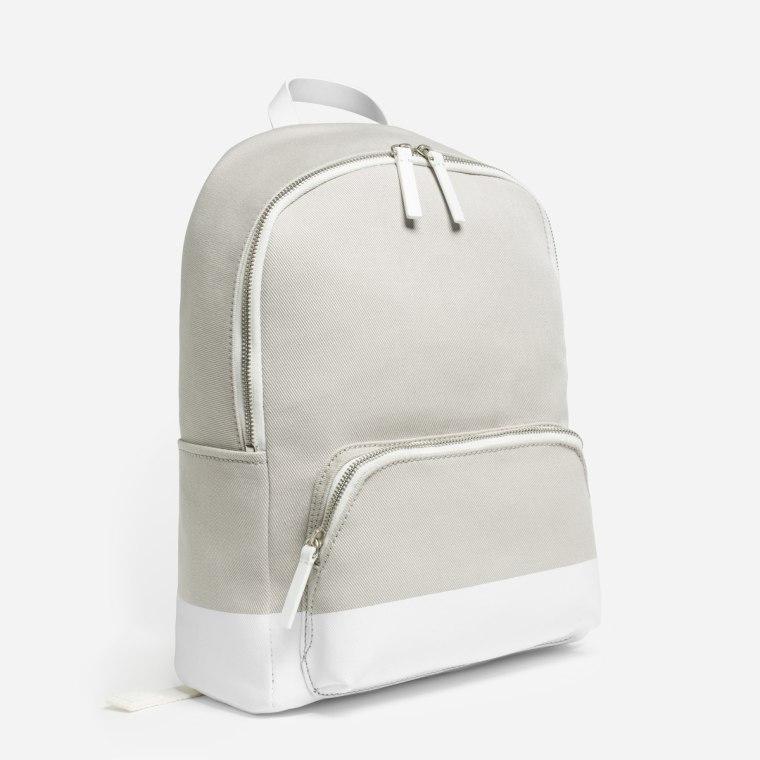 Everlane The Dipped Mini Zip Backpack
