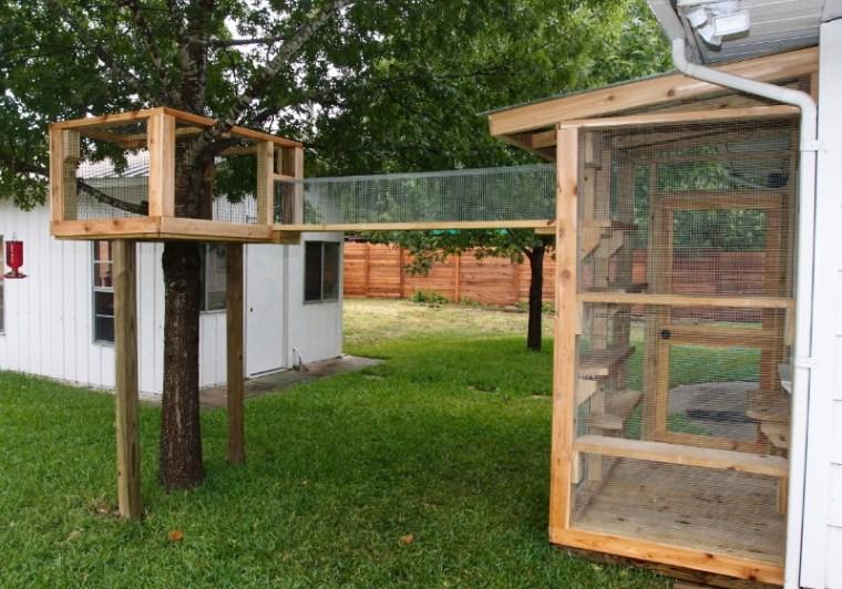 Catio treehouse