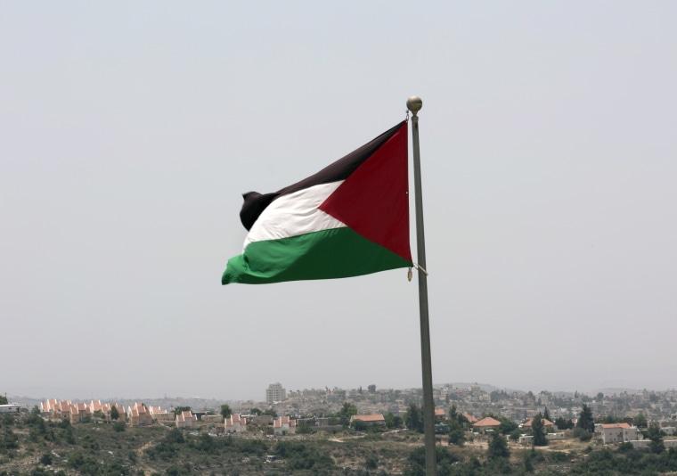 Image: Palestinian national flag