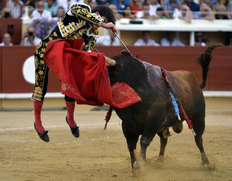 Image: FRANCE-SPAIN-BULLFIGHTING
