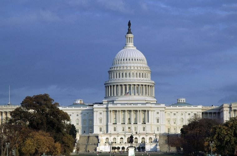 Image: The Capitol, seat of the U.S. Congress in Washington D.C.