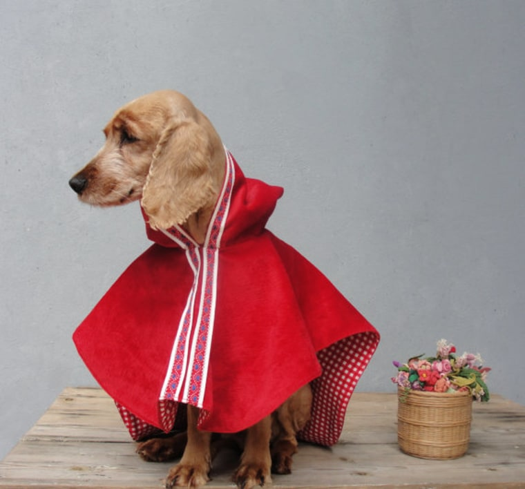 Little Red Riding Hood dog Halloween costume
