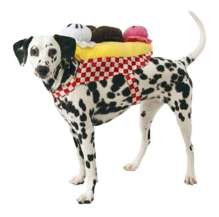 Ice cream dog Halloween costume  sc 1 st  Today Show & Halloween dog costume ideas: 32 easy cute costumes for your canine