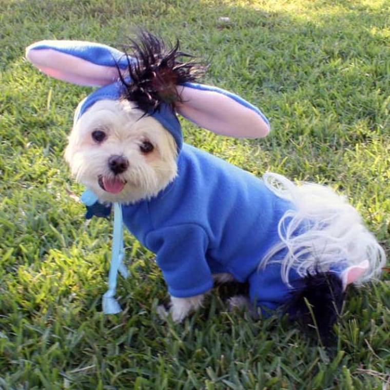 eeyore dog halloween costume