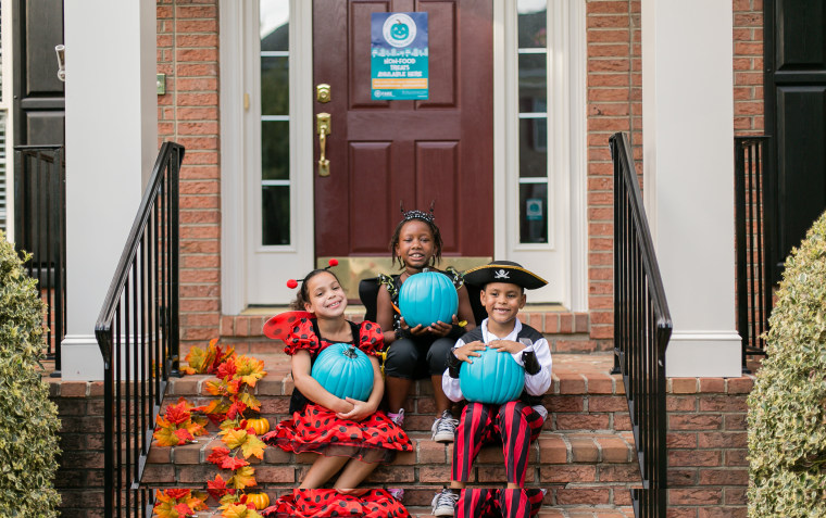 IMAGE: Teal Pumpkin Project