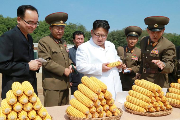 Image: North Korean leader Kim Jong Un provides field guidance to Farm No. 1116
