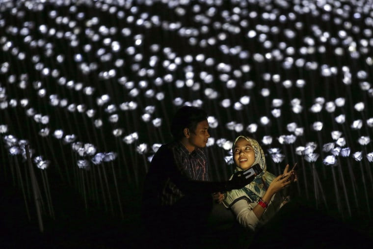 Image: 30 thousand LED white roses to promote Malaysia