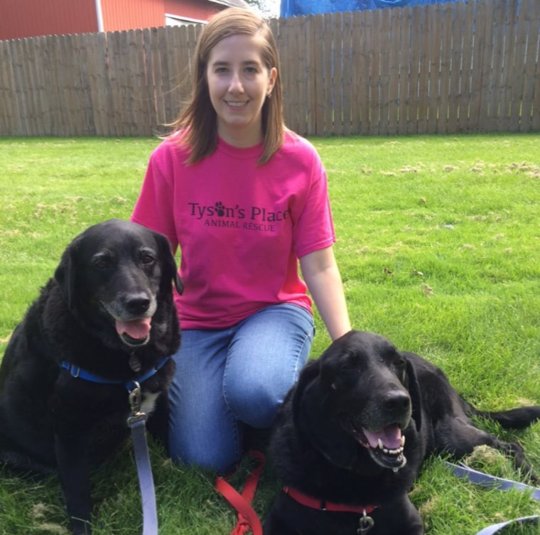 Jill Bannink-Albrecht, founder of Tyson's Place Animal Rescue in Michigan, is pictured with two senior black labs named Spike and Stella.