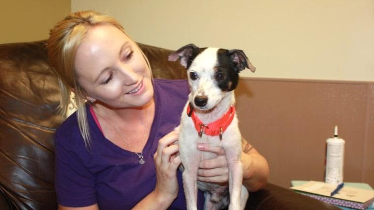 Toledo Area Humane Society unveils new 'real life' room