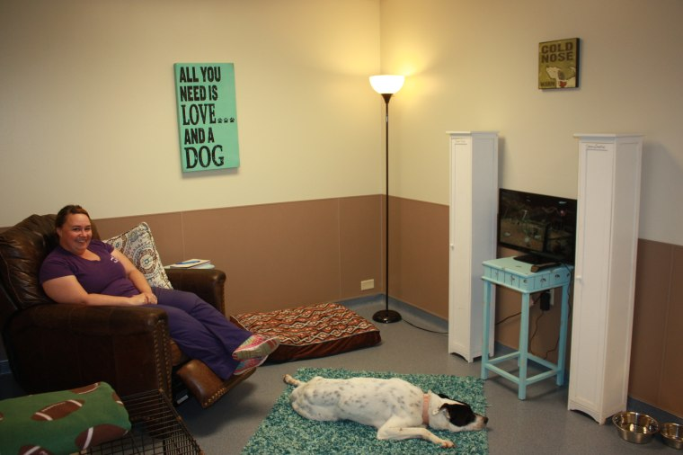 Animal shelter creates real-life room for dogs