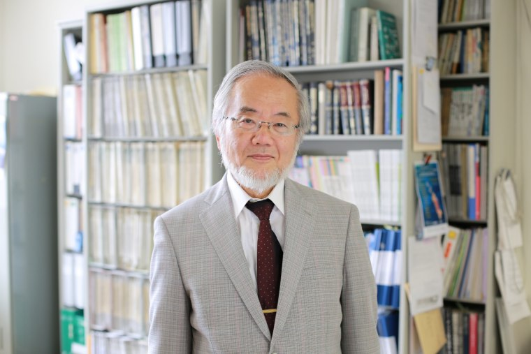Image: Yoshinori Ohsumi, a professor in Tokyo Institute of Technology, was awarded the 2016 Nobel prize for medicine.