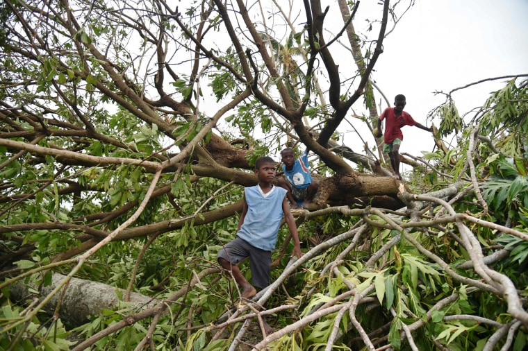 Image: Children climb on trees destroyed after Hurricane Matthew