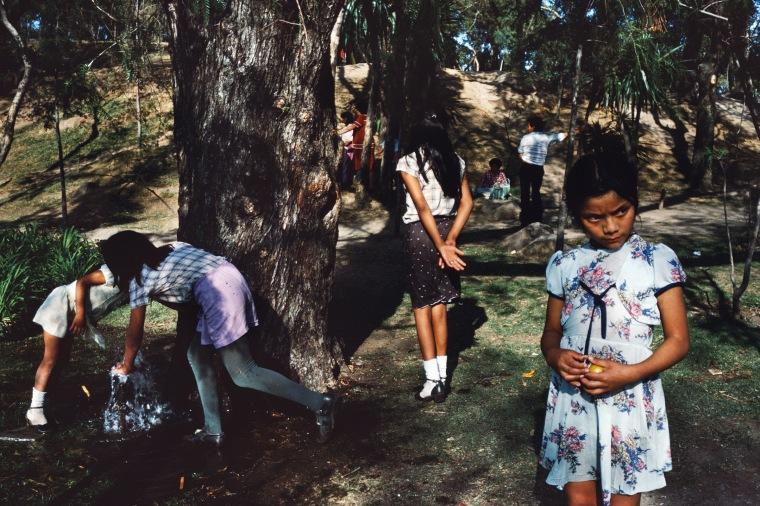Image: Ciudad M?xico, DF, 1984