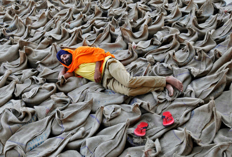 Image: A farmer rests upon sacks filled with paddy at a wholesale grain market in Chandigarh