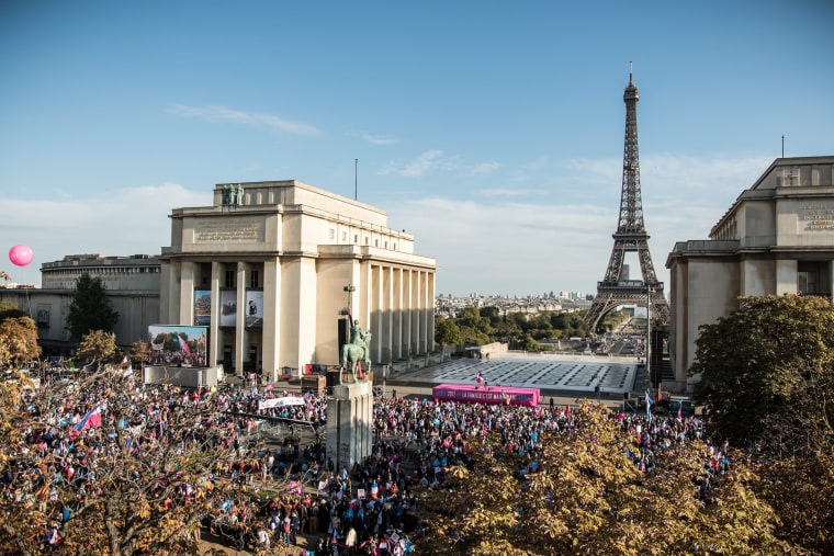 Image: French anti gay marriage protest in Paris