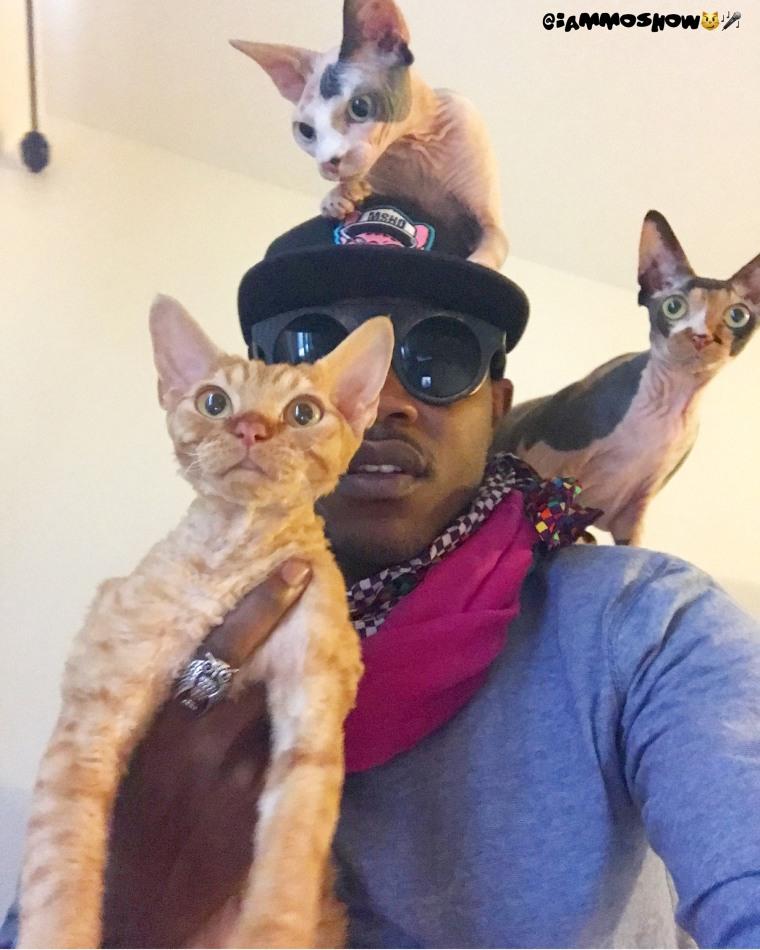 Baltimore rapper iAmMoshow loves cats
