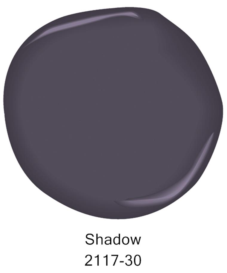 Benjamin color chip Shadow